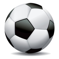 Realistic Soccer Ball on White Background