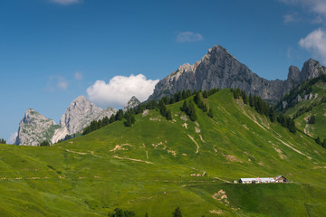some mountain peaks in tyrol with green meadow