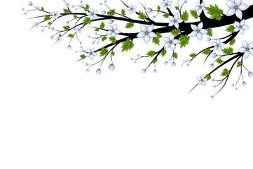 Digital Art Photo Picture Image for Desktop or Print
