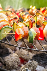 Hot skewers with vegetables on the grill
