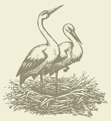 Vector graphic monochrome drawings of pairs of storks in nest