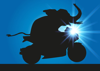Elephant Moto