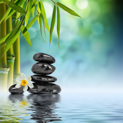 Wall Mural - Stones and Bamboo on the water with narcissus flower