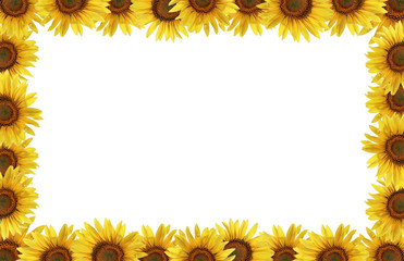 Rahmen aus Sonnenblumen