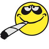 Quels tabacs allons nous massacrer pour cette Saint Barthélémy ?  160_F_55075141_8hGvOreXqU9BIGOohn5nu3bNYVHHc2zb
