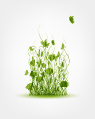 Green meadow background for your design
