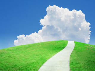 Beautiful green field and sky with pathway