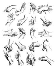 Hands  : various Positions