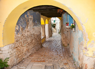 Fotomurales - Ancient stone  cobbled street of Rovinj. Croatia.