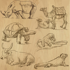 Animals around the World (part 6). Collection of hand drawings.