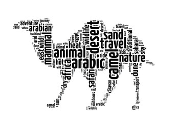 Words illustration of a camel in white background.