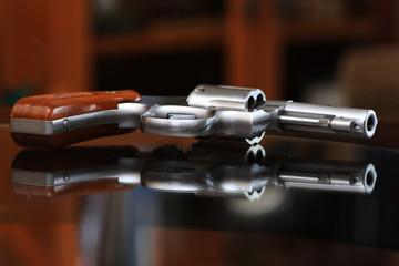 Smith & Wesson Hand Gun