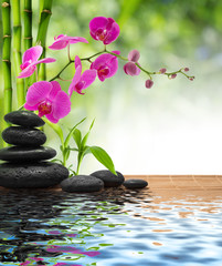 Fotobehang - composition bamboo-purple orchid-black stones