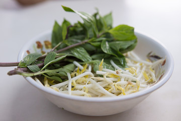 bean sprouts and sweet basil ,side dishes serve with Thai Noodle