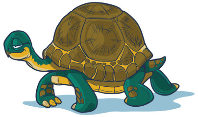 Cartoon Tortoise Walking