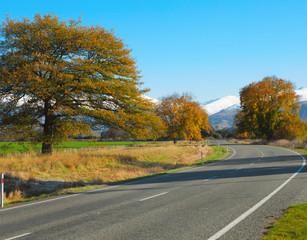 Autumn road, Canterbury, NZ