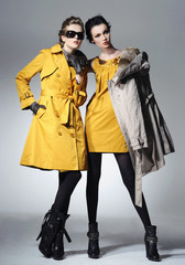 Vogue style photo of a two fashion posing on light background