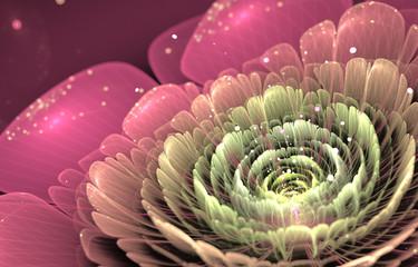 Canvas Afdrukken  - pink and green fractal flower