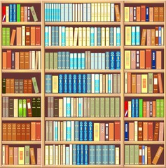 Bookcase full of books