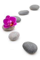 Fototapete - Spa stones.