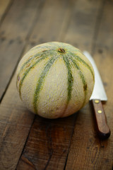 Messer, Melone