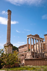 Fotomurales - Column and mausoleum ruins at Roman Forum