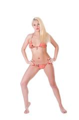 Beautiful young woman in a bikini posing.