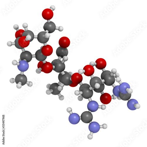 Streptomycin bacterial coverage of azithromycin