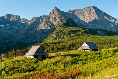 Pieniny, Kluszkowce, Tatra Mountains, Poland  № 8239  скачать