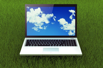 laptop on grass. Concept