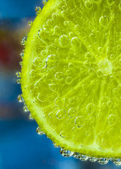 Lime Slice in Sparkling Water