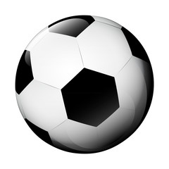 isolated classic football ball on white vector
