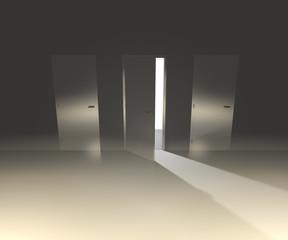 White Doors Interior Backdrop