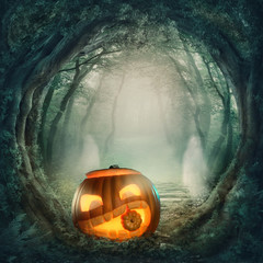 Fototapete - Pumpkin in dark forest