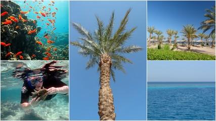 Collage Sonne, Urlaub, Meer
