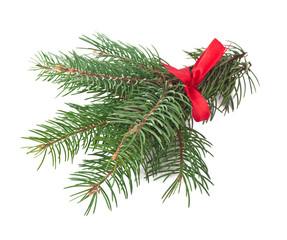 Green pine branch with red bow on a white background