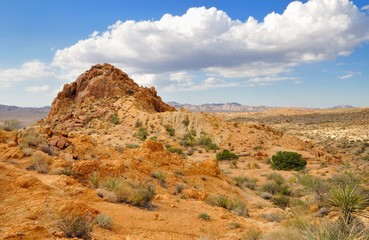 Beautiful desert view with cloudy sky in Joshua Tree National Pa