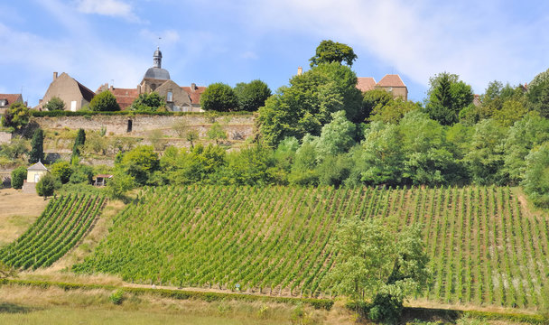 vignes de Vézelay (Morvan)