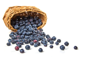 Blueberries, scattered from the basket