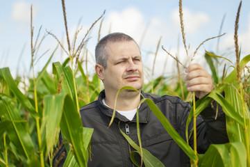 Farmer in the corn field