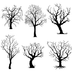 vector set of silhouettes of trees