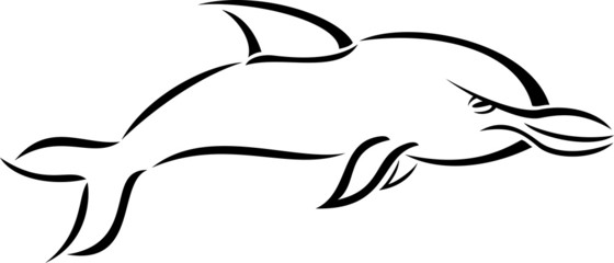 Black and white cartoon style dolphin