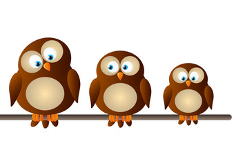 Cute cartoon owls on white