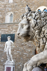 Lion and David at Loggia Dei Lanzi , Florence Italy