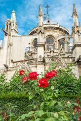 gothic medieval cathedral Notre Dame de Paris