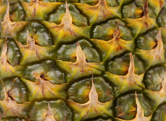 Background of pineapple fruit. Close up.