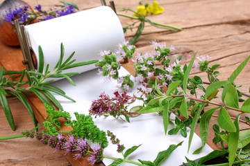 Notepad with fresh herbs