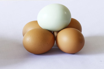 duck egg on top of the chicken egg