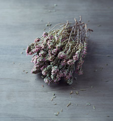 Bunch of dried thyme