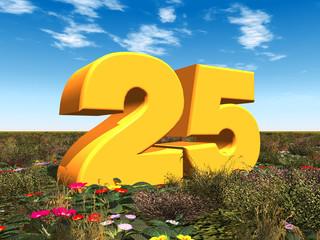 Die Zahl 25